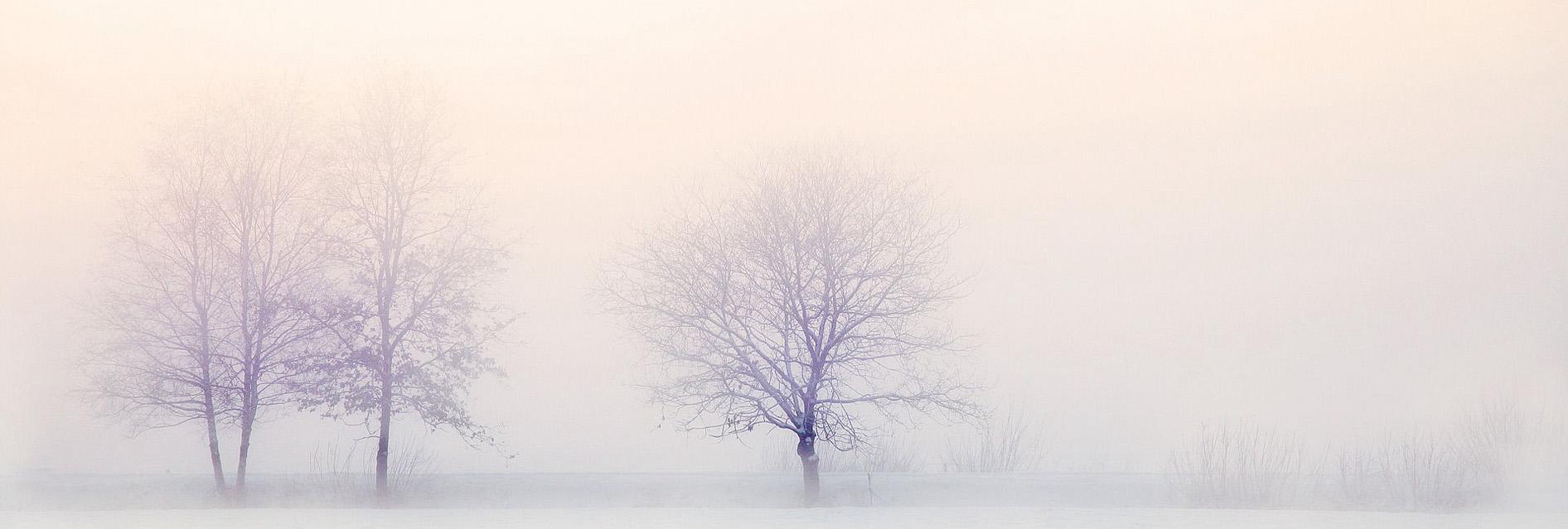 Paisaje Invierno